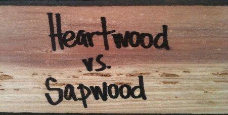 heartwood vs sapwoodR